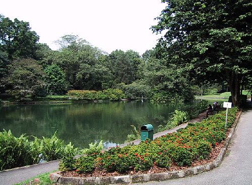 parks , gärten und naturreservate in singapur,